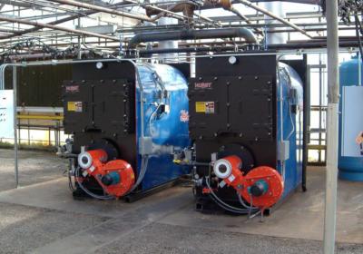 Hot Water Firebox Boiler
