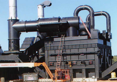 ready-to-ship-plant6